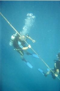 Australia 2000 - 062