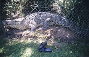 Australia 2000 - 076