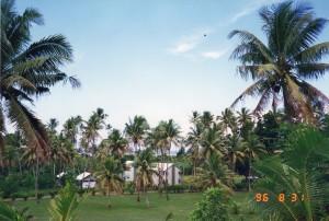 Fiji011