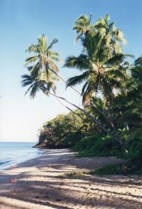 Fiji014