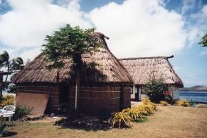 Fiji054