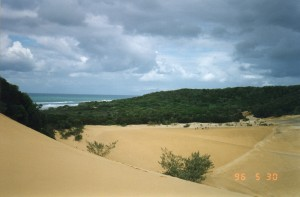 Fraser Island003